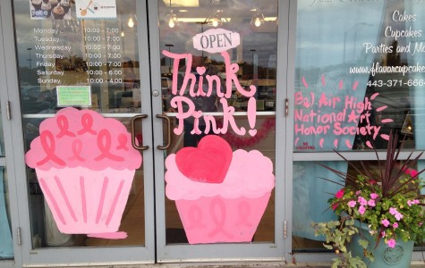 NAHS Paints Main Street Pink