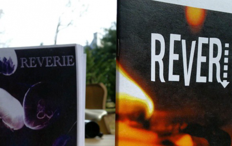 Reverie Needs Writing and Art Submissions!