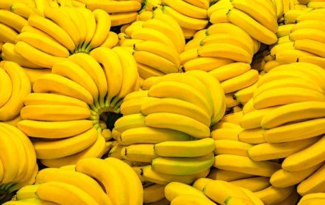 A Banana a Day…